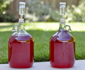 cherry-melomel-carboy