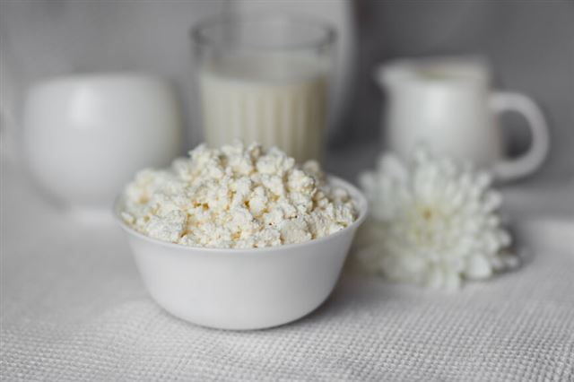 Homemade cottage cheese on white bowl