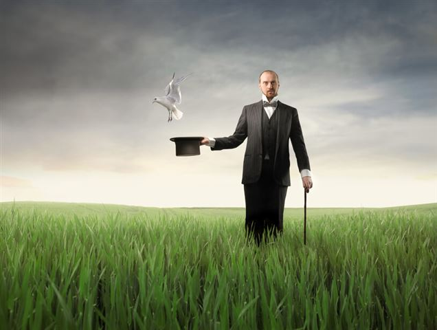 Magician on a green meadow with bird flying out of his cylinder hat
