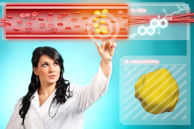 Лактофильтрум при повышенном холестерине