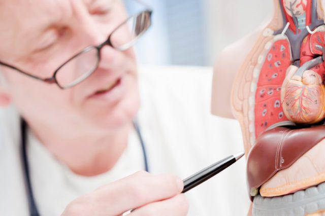 Стоит ли делать прививку от гепатита б взрослым