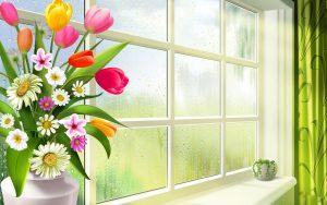 Красивые цветы на подоконнике