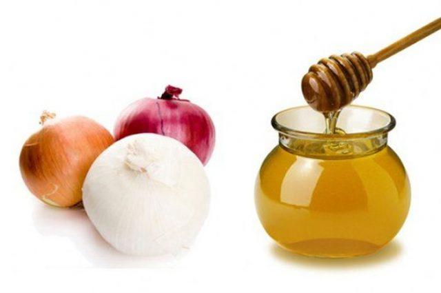 Лечение печени медом и луком