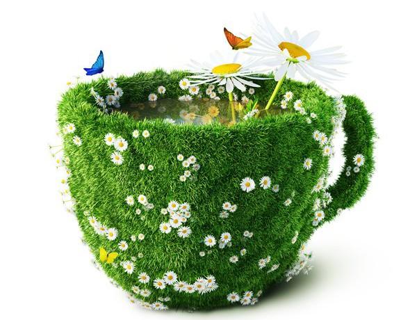 Монастырский чай лечебный