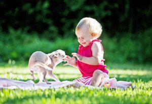 Щенок с ребенком