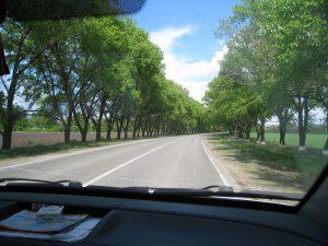 Вид из машины на дорогу