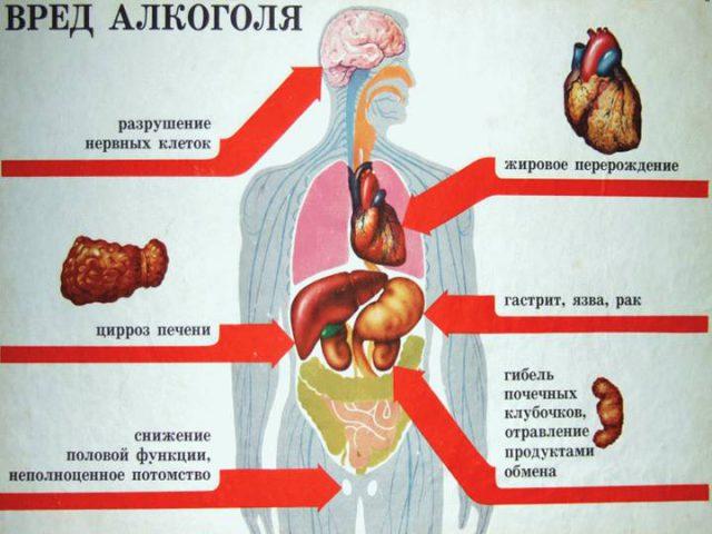Вред организму