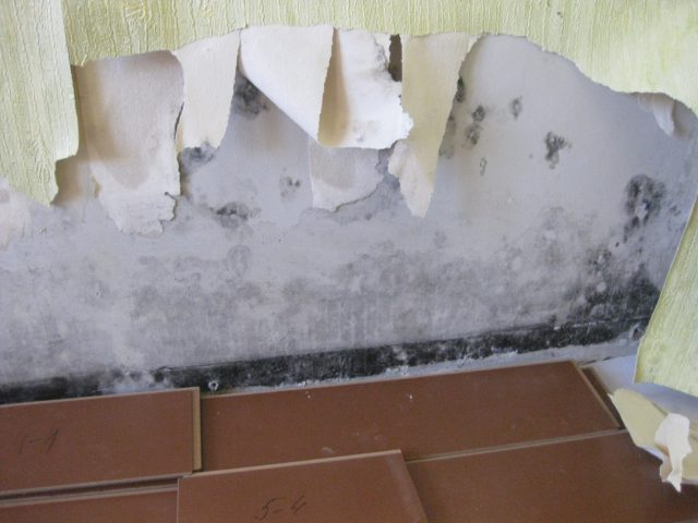 Утепление дома изнутри пенопластом