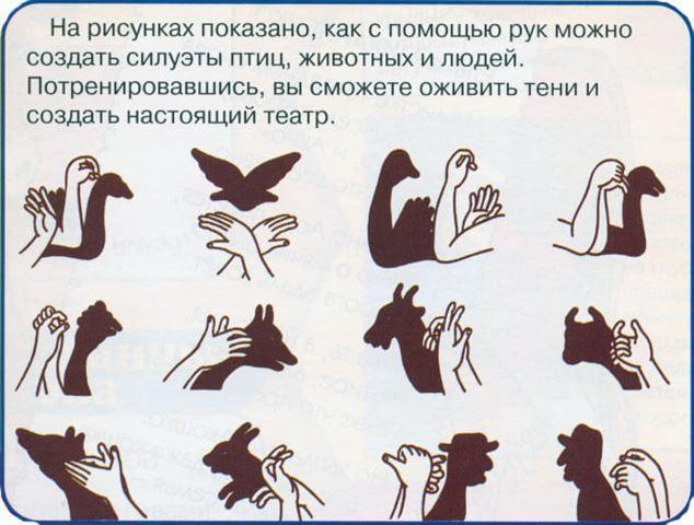 Театр теней для детей. Тени животных своими руками 25